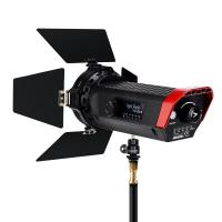 Aputure Light Storm LS Mini 20d