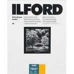 Ilford MGD.25M RC 24x30/10
